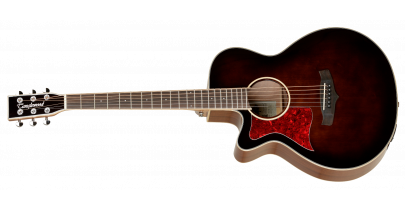 Tanglewood TW4 E, Whiskey Barrel (Left-Handed)